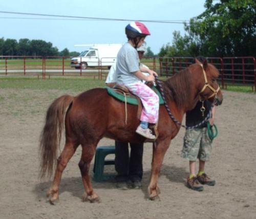 Ponycamp1