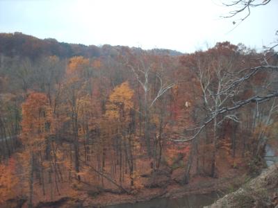 Fallday2